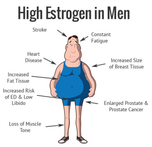 استروژن در بدن مردان